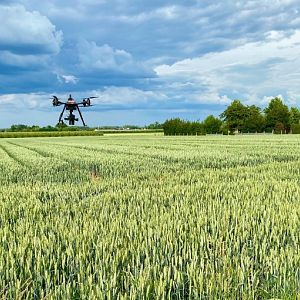 Integrating digital phenotyping tools in your day to day operations picture